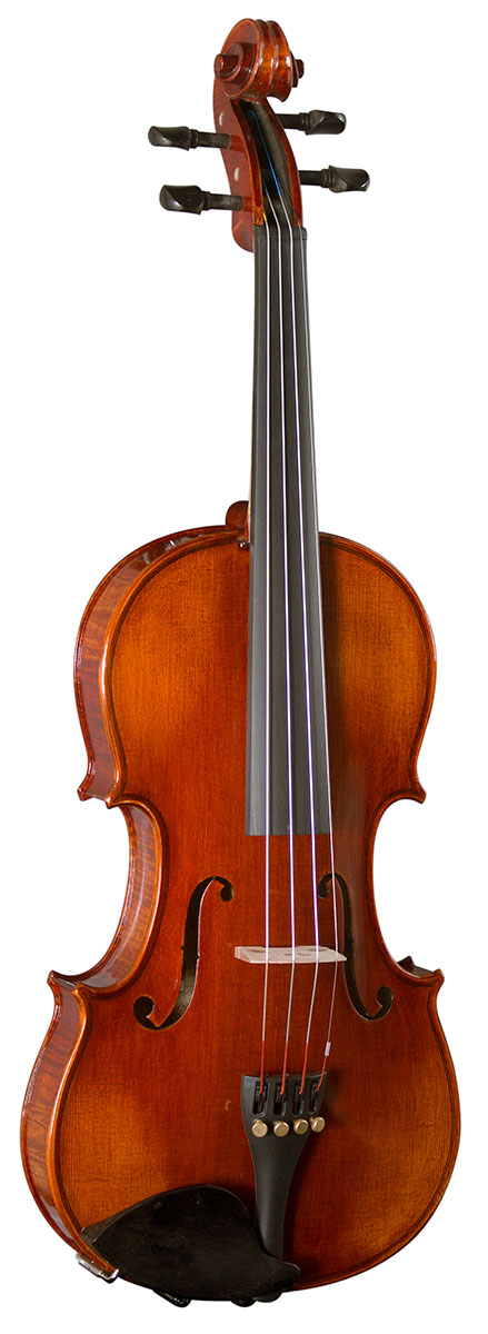 Hidersine Violin Piacenza 4/4 Finetune Outfit