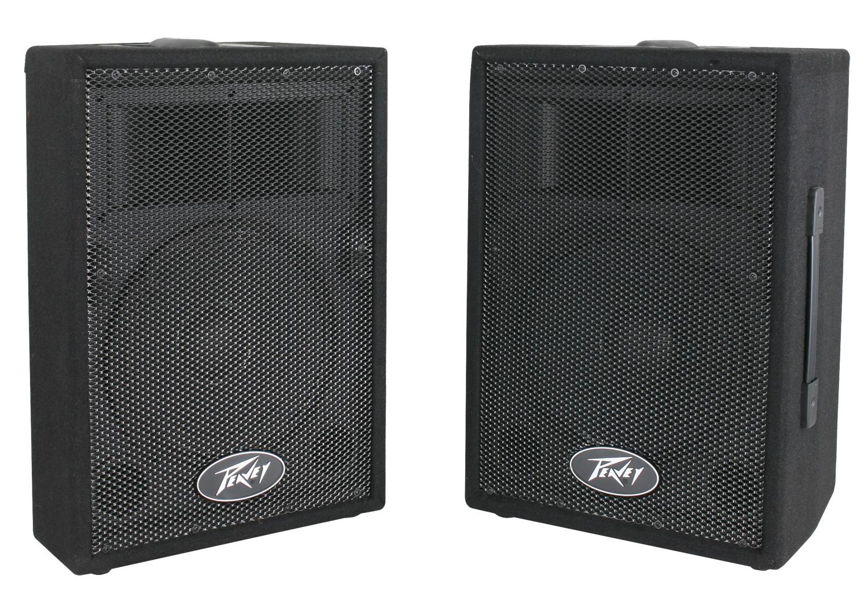 Peavey PVi 10 Two Way Speaker System Pair