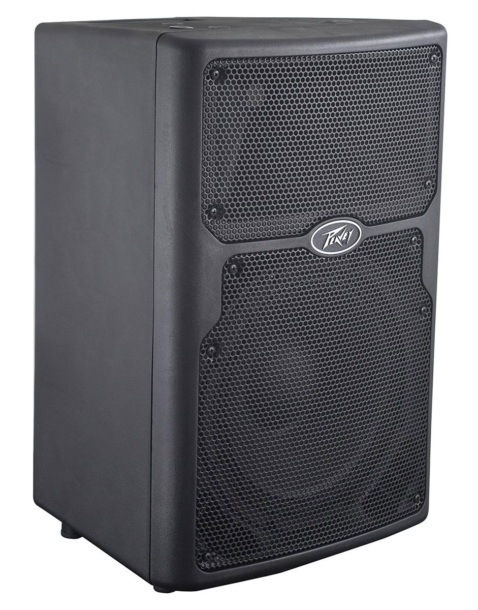 Peavey PVX 10 Non-Powered Speaker