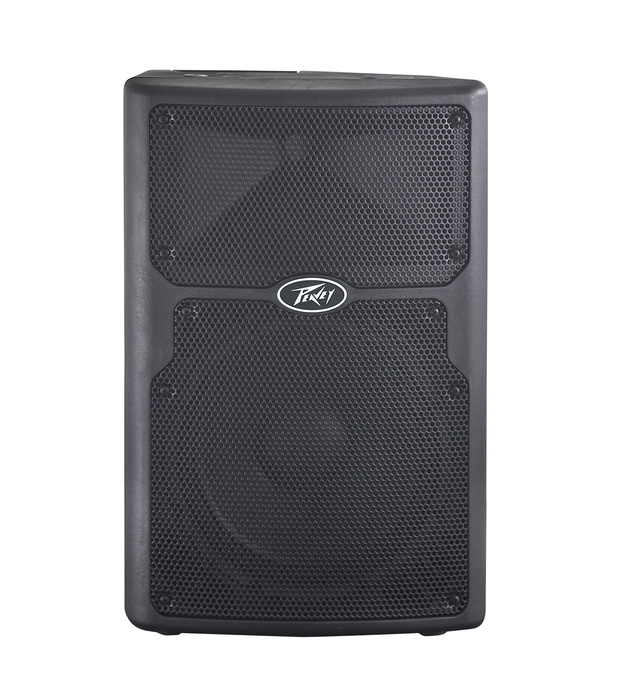 Peavey PVXp 10 Speaker