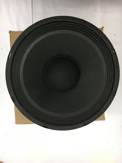 Speaker Max 110