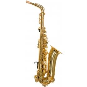 Trevor James Alphasax Alto Sax Outfit - Gold Lacquer