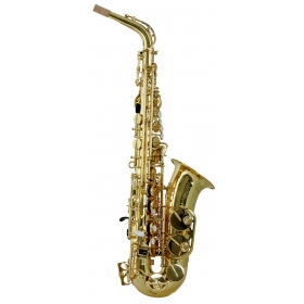 Trevor James Horn Classic II Alto Sax Outfit - Gold Lacquer