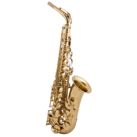 Trevor James EVO Alto Sax Outfit - Gold Lacquer
