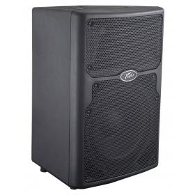 Peavey PVX 10 Non-Powered Speaker