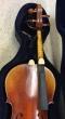 Hidersine Reserve Cello. Stradivari. Boxwood Fittings - B-Grade Stock CL0861