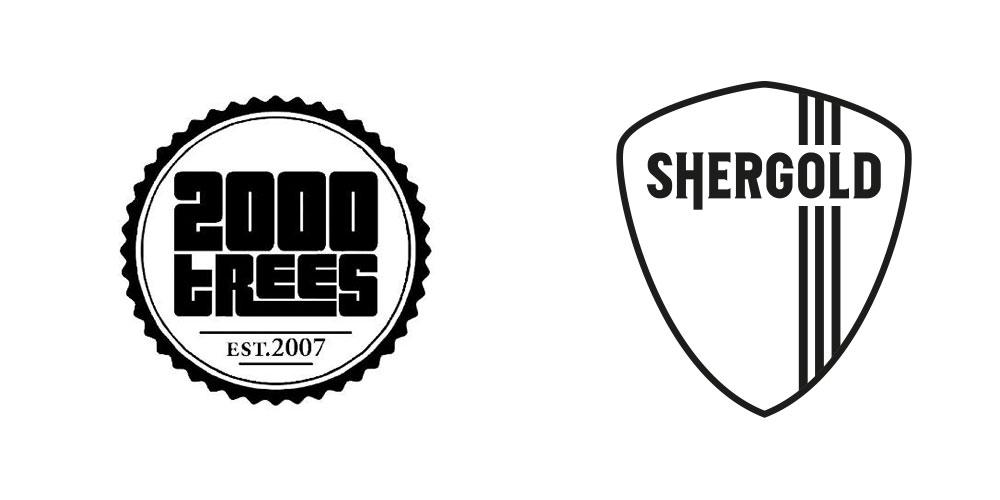 Shergold Guitars announce artist endorsement area at 2000 Trees Festival