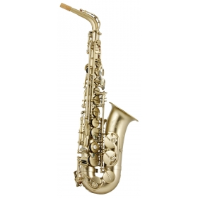 Trevor James 88 Alto Sax Outfit - Gold Frosted