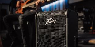 Video Review: Peavey Max 300